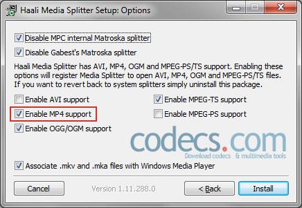 Haali Media Splitter install wizard